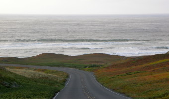 Friday Favorites: Point Reyes