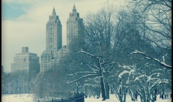 Friday Favorites: Newly Fallen Snow