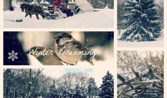 Friday Favorites: Winter Dreaming