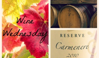 Wine Wednesday: Tres Palacios Carménère