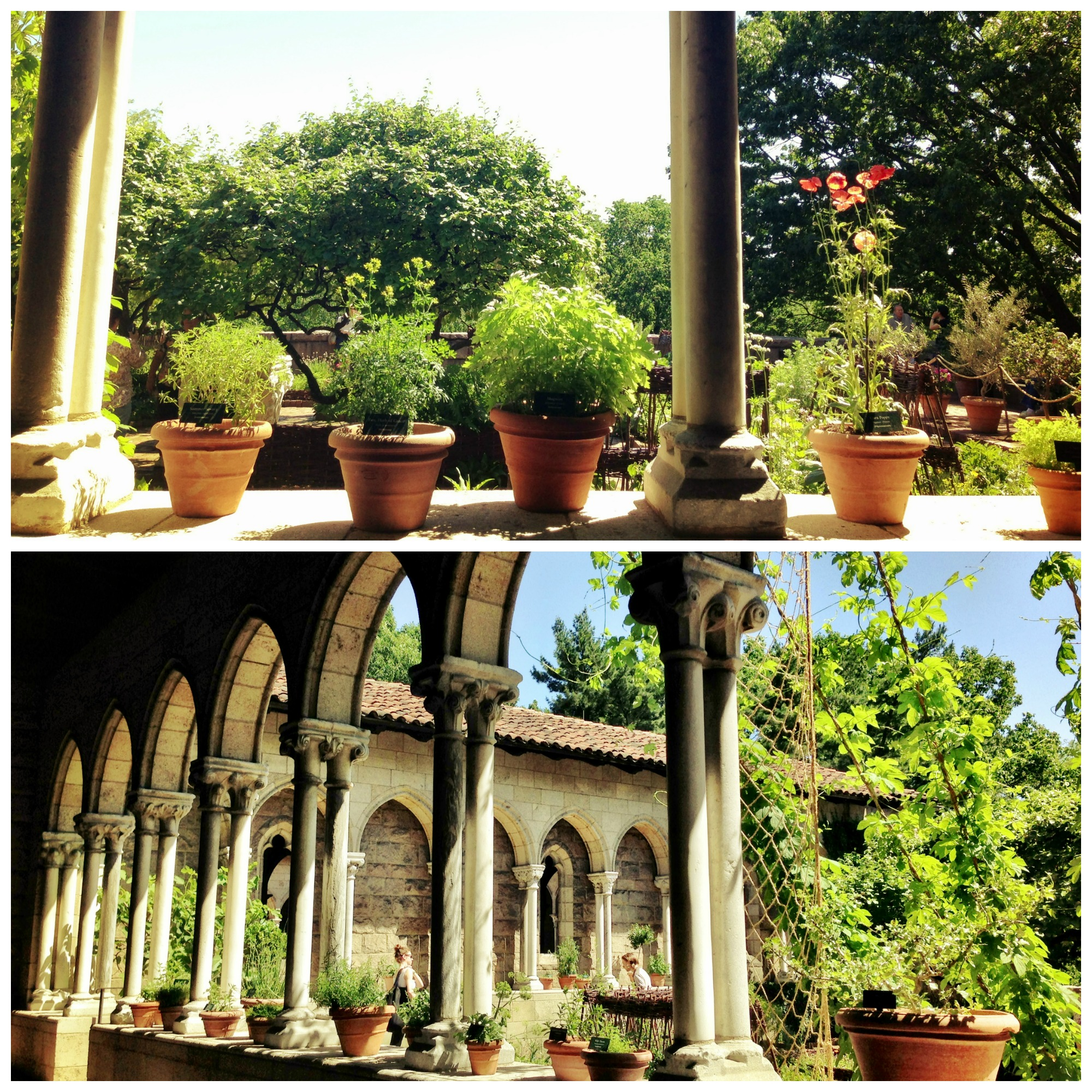cloisters 6