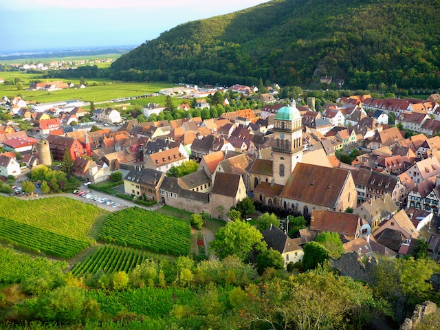 alsace wine region 3