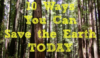 10 Ways You Can Save the Earth TODAY!