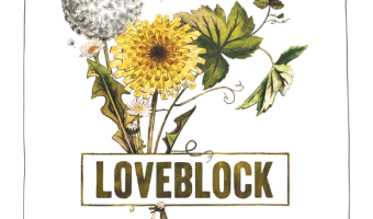 Wine Wednesday: Loveblock Sauvignon Blanc