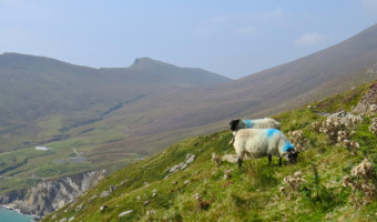 Travels: Achill Island