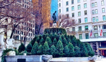 Travels: Christmas in New York Tour