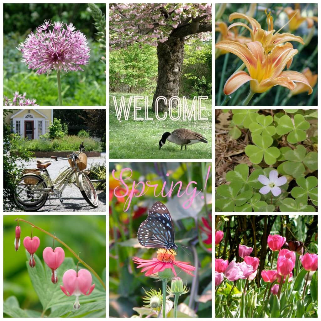 welcome spring 2015