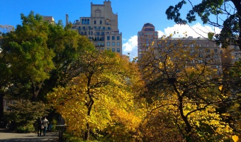 24 Hours in New York City: Upper East Side Edition